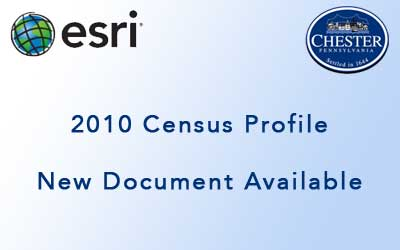 2010 Census Profile Document