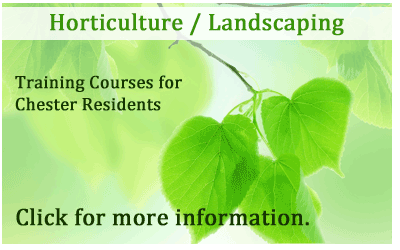 Chester Horticulture and Landscaping Training 2015