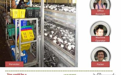 Job Fair: Mushroom Industry